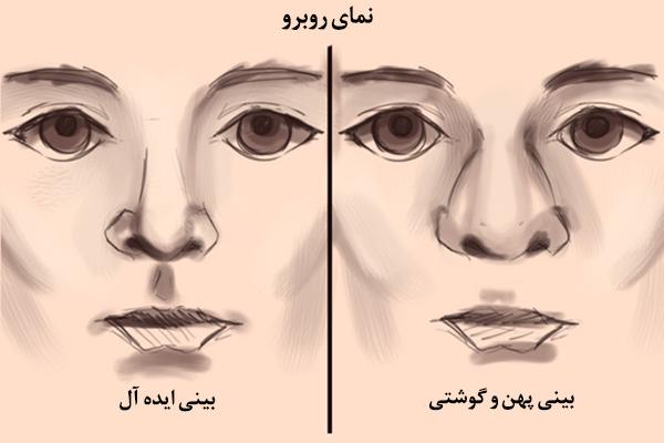 زیبا شناسی عمل بینی